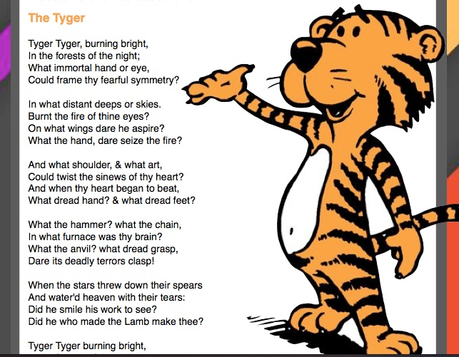 what is the poem tyger about
